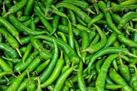 High Quality Green Chilli