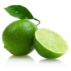 High Quality Green Lemon