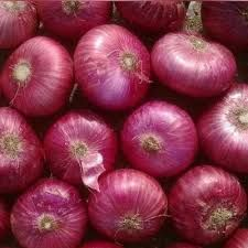 High Quality Onion