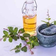 Essential Tulsi Oil