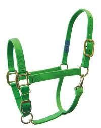 Green Horse Nylon Halter