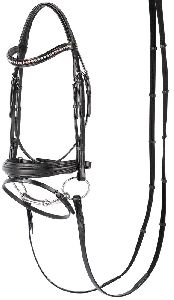 Stylish Horse Bridle