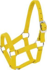 Yellow Horse Nylon Halter