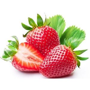 Fresh Red Strawberry