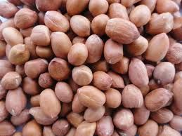 Natural Groundnut Kernels