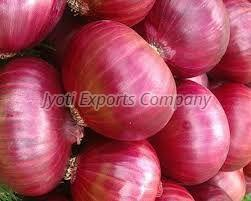 Fresh Big Onion