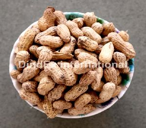Natural Shelled Peanuts