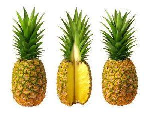 Fresh Sweet Pineapple