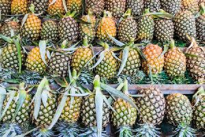 Organic Sweet Pineapple