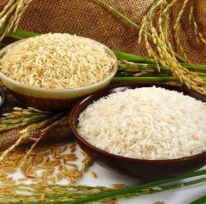 Sona Masoori Steam Rice