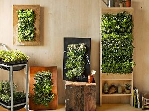 Decorative Vertical Wall Garden