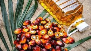 RBD Palm Oil