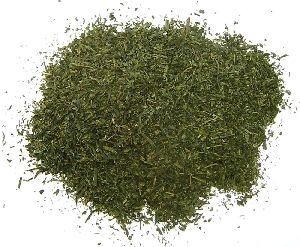 Sun Dried Tea Leaves