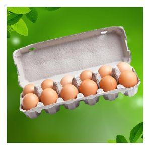 12 Egg Carton