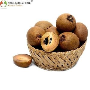 Brown Indian Fresh Fruit Chikoo
