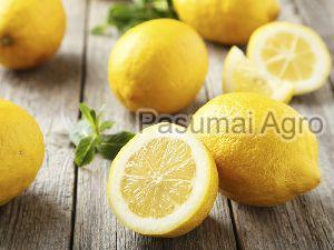 Fresh Seeded Lemon
