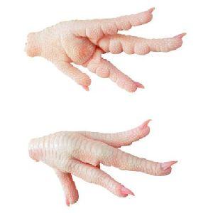 Fresh Chicken Feet