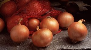 Fresh Garva Onion