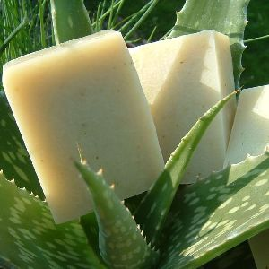 Aloe Vera and Calamine Soap