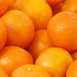 Fresh Kinnow Citrus