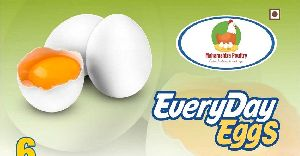 Everyday Eggs