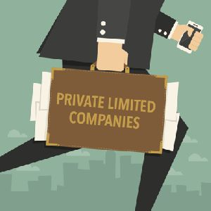Private Limited Company Registration Service