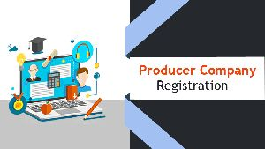 Producer Company Registration Service