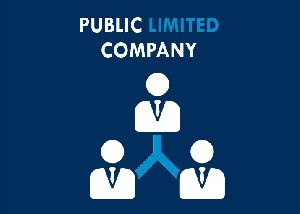 Public Limited Company Registration Service