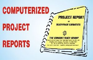 Project Report Consultancy