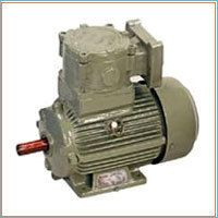Flameproof Gear Motor
