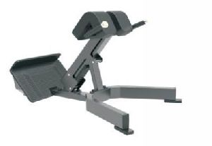 E3045 Back Extension Machine
