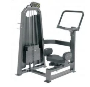 Rotary Torso Exercise Machine