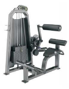 T1031 Back Extension Machine