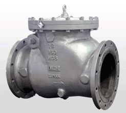 Bolted Cover Swing Check Valve