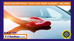 Car Paint Protection Service