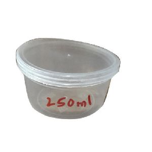 250 ml Disposable Plastic Container