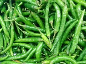 Fresh Green Chilies