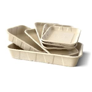 Molded Packaging Trays