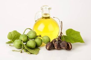 Jatropha Oil