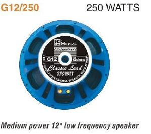 G12-250 Professional PA Speaker