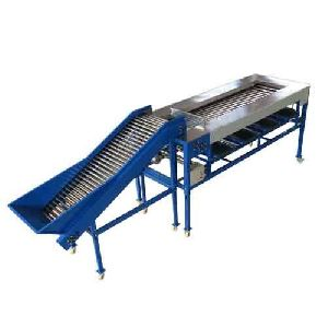 Guava Sorting Grading Machine