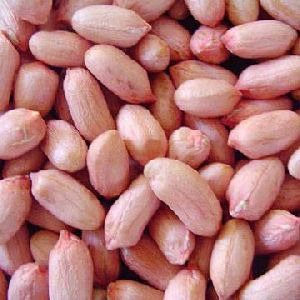 Dried Groundnut Kernels