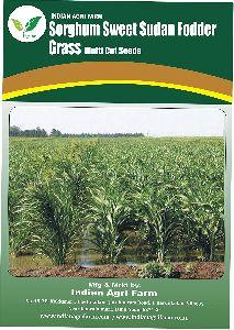 Hybrid Sorghum sudan grass