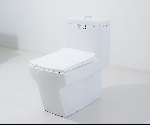 Middle East Vitreous Anglo Indian Design Sink Toilet