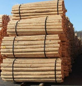 Wholesale CCA Treated Timber