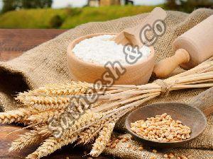 Organic Maida Flour