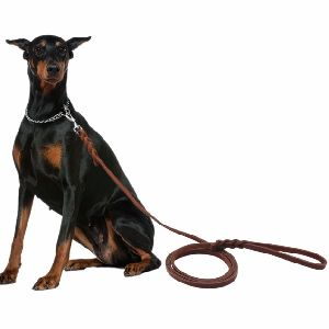 NC-LES-104 Rope Dog Leash with Leather Handle