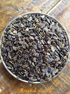 Round Gourd Seeds