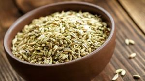 Organic Fennel Seeds