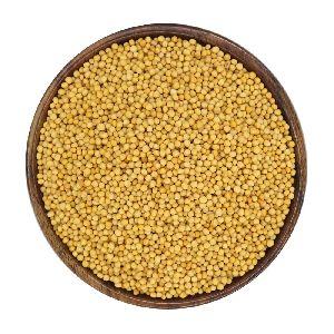 Organic Mustard Seeds